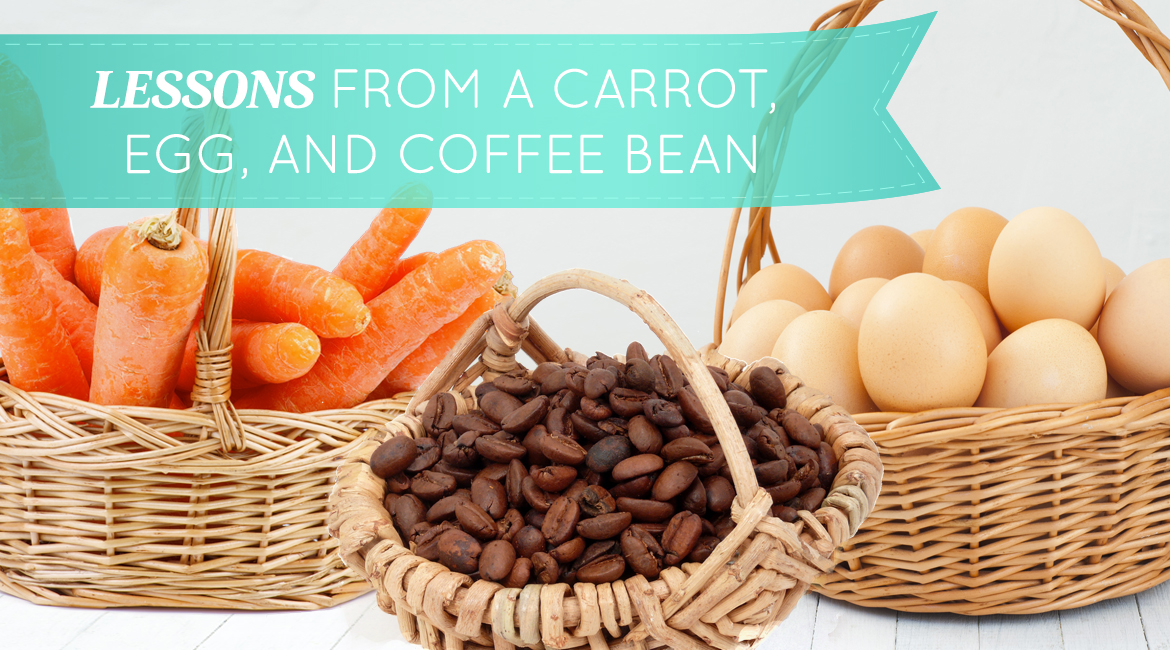 Lessons From A Carrot Egg And Coffee Bean