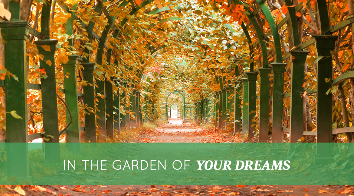 In The Garden Of Your Dreams