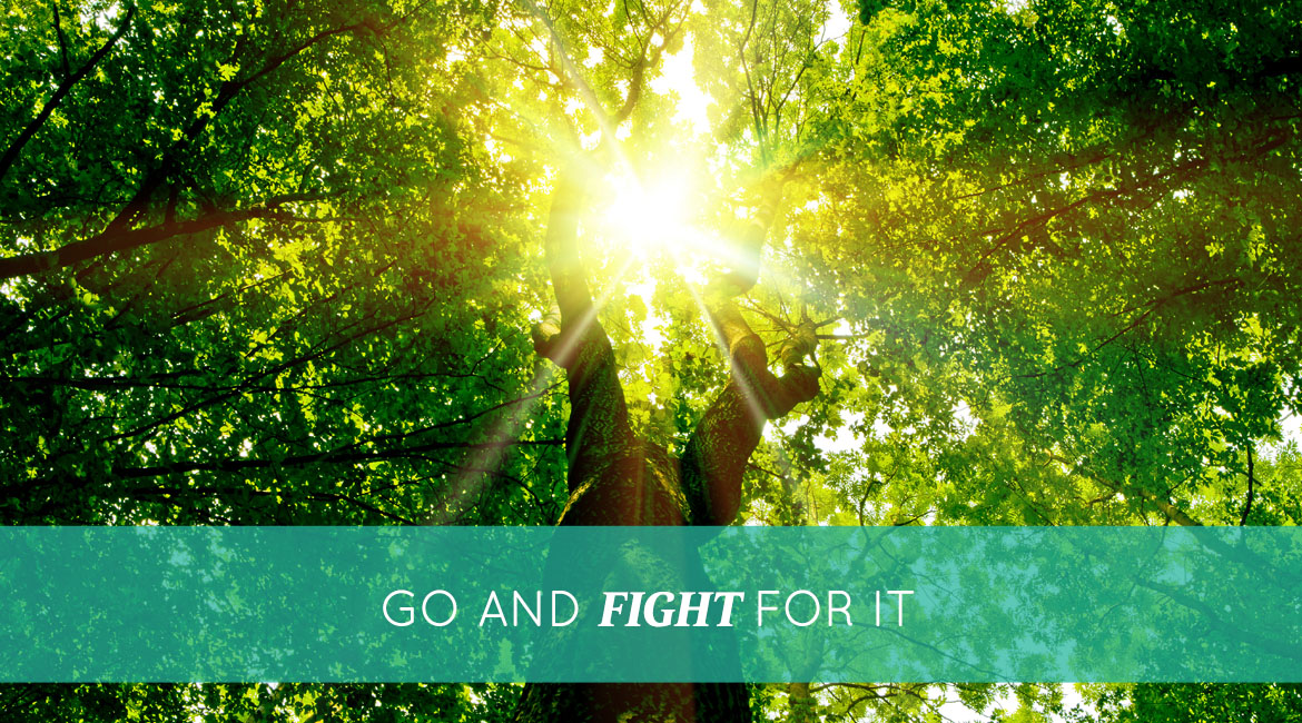Go And Fight For It