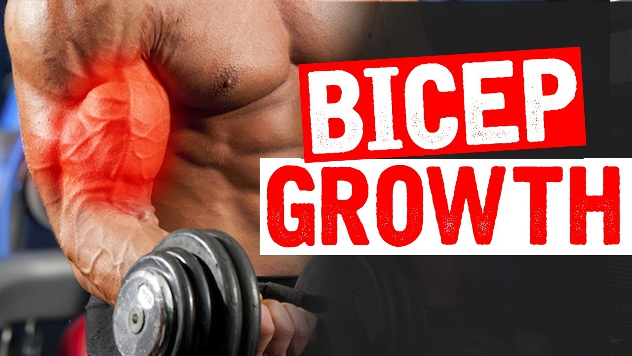 One Bicep Exercise your NOT doing (BUT SHOULD!)