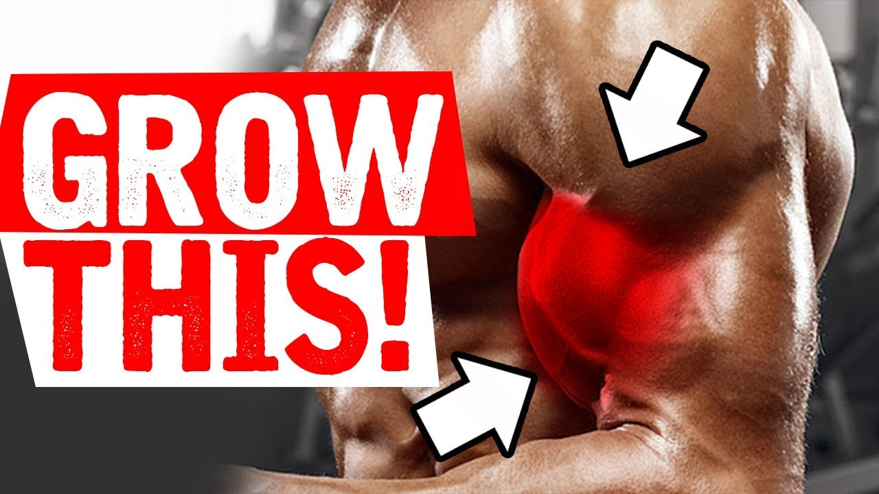 The BEST way to Build your BICEPS!