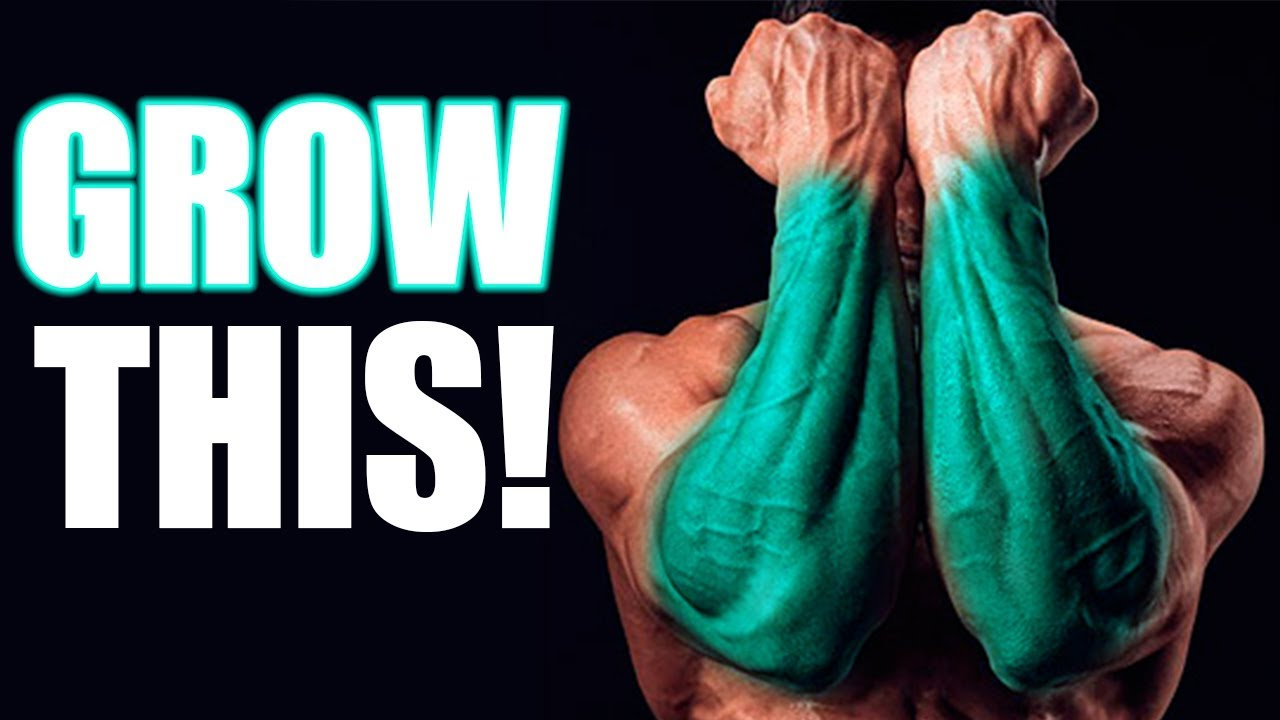 The BEST way to Build your FOREARMS!