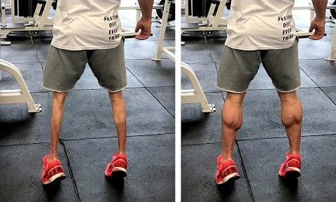 Calf Workout | NO MORE CHICKEN LEGS!