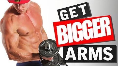 Arm Workout (INSANE PUMP!)