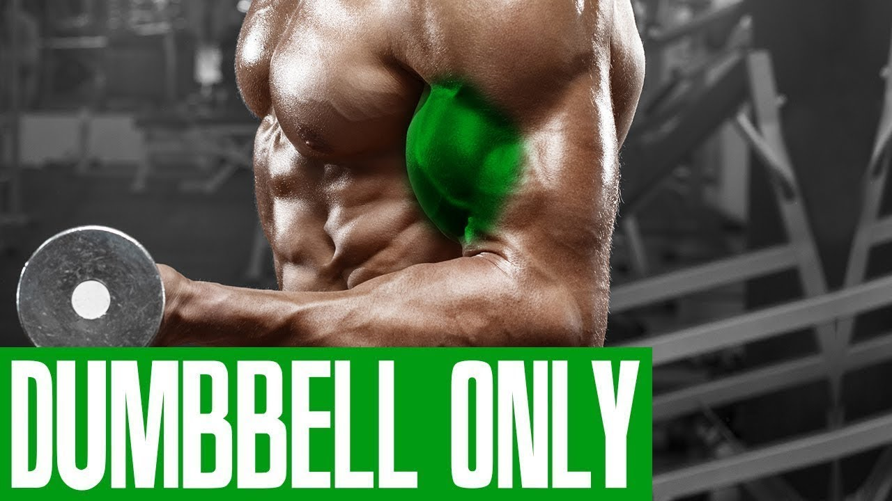 BICEP WORKOUT! (DUMBBELL ONLY!)