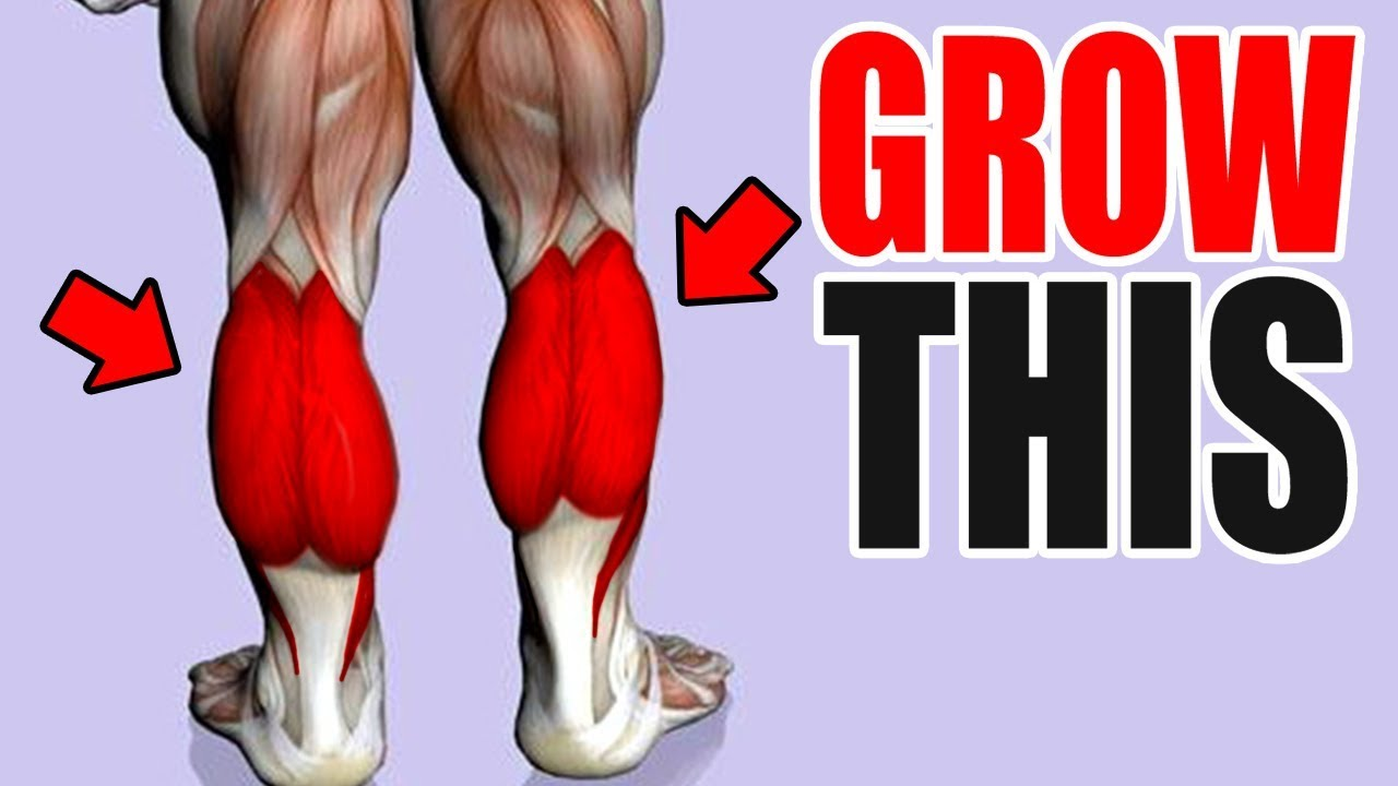3 Best Exercises for BIG CALFS!