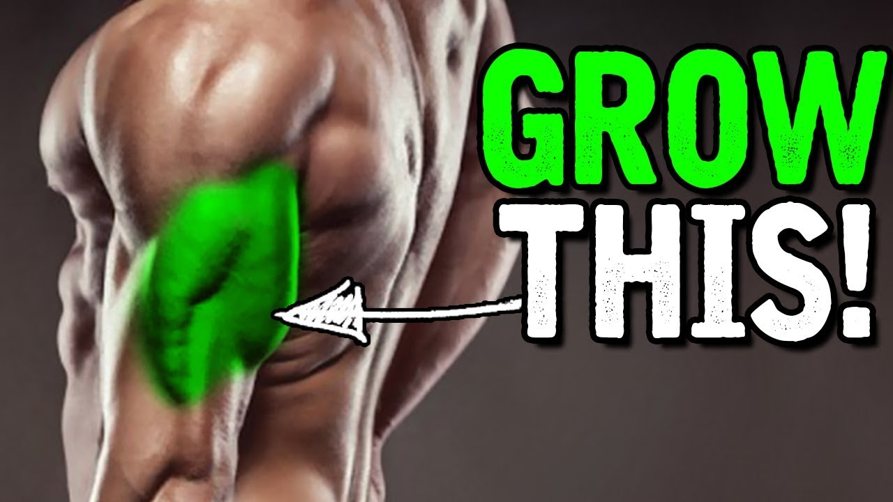 The BEST way to Build your TRICEPS!