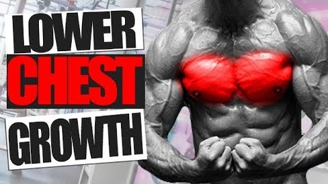 How to GROW your Lower Chest! (Try this Workout!)