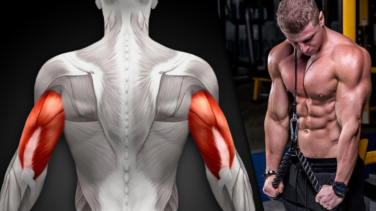HOME TRICEPS WORKOUT! (GROWTH TIPS!)