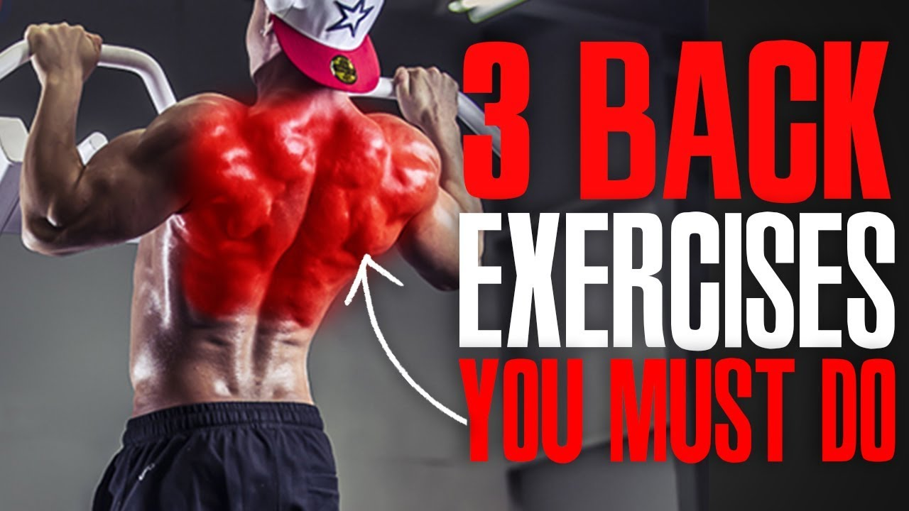 MUST DO EXERCISES! (BACK!)