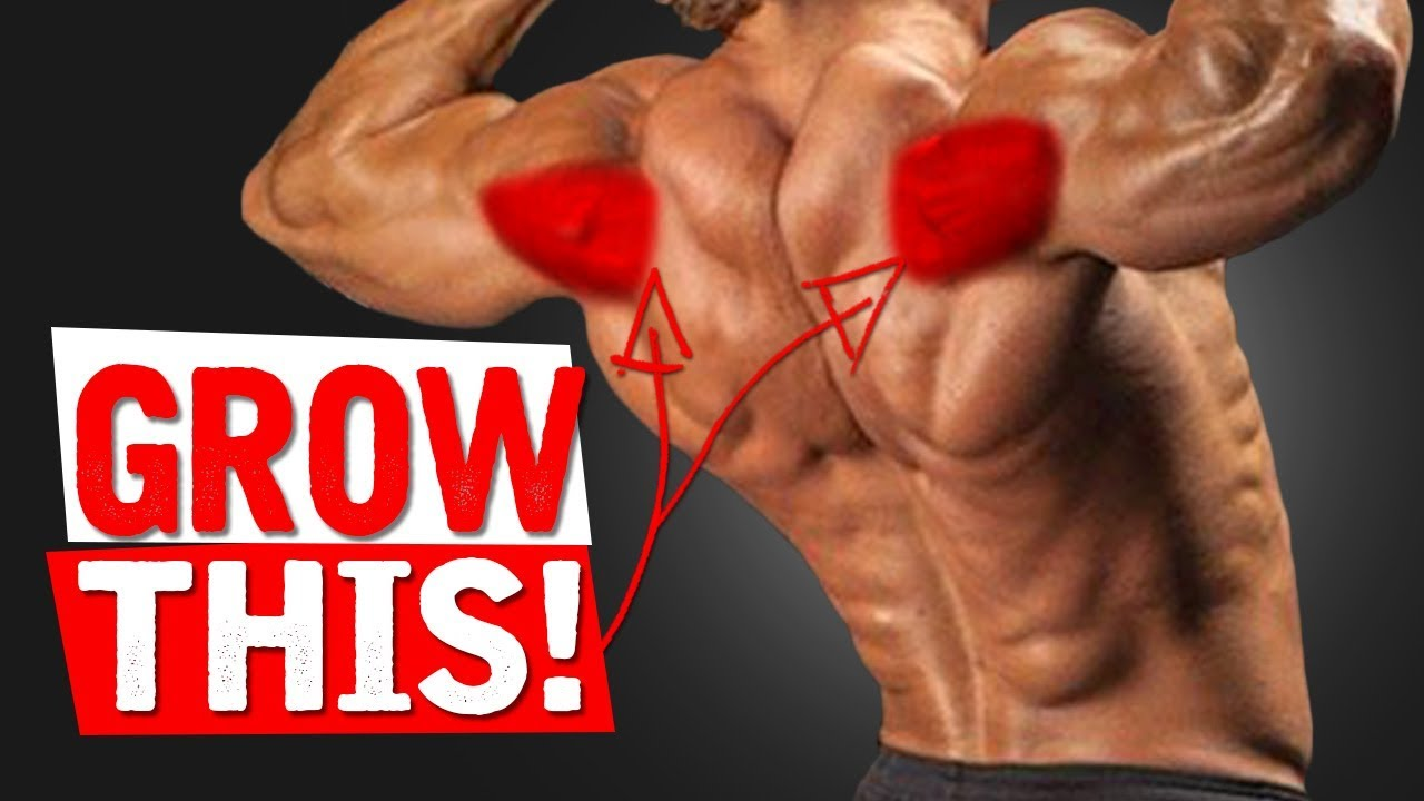 The BEST Exercises for REAR DELTS!!