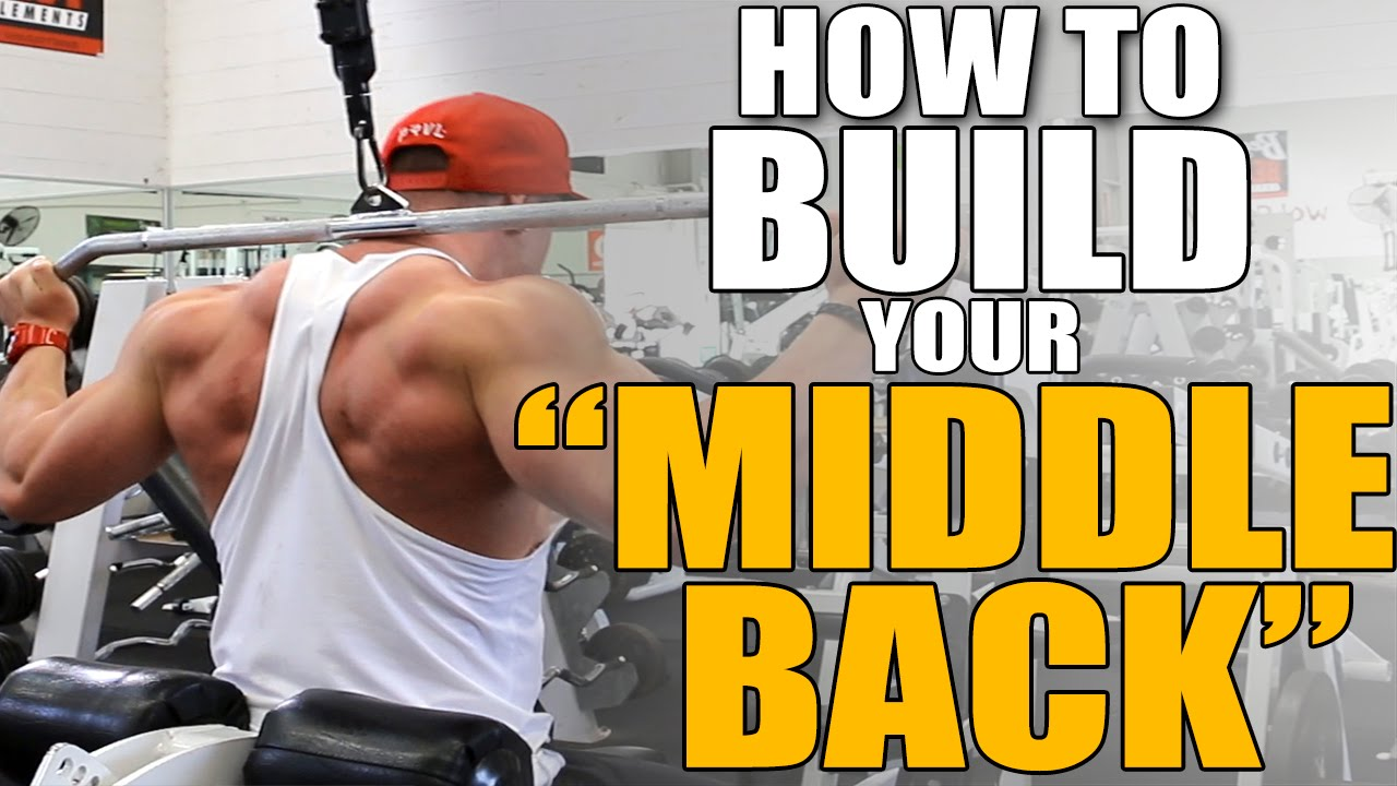 HOW TO BUILD YOUR MIDDLE BACK!